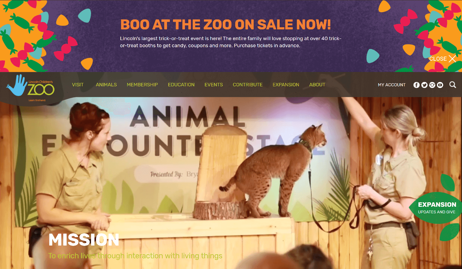nonprofit custom design Lincoln Children's Zoo