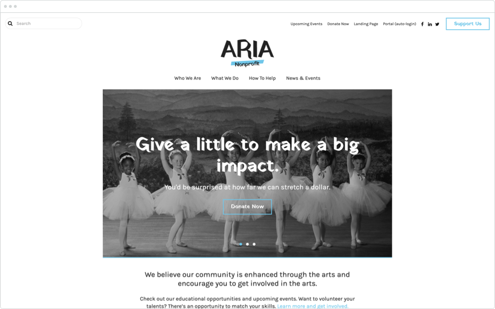 Nonprofit Website Design Aria