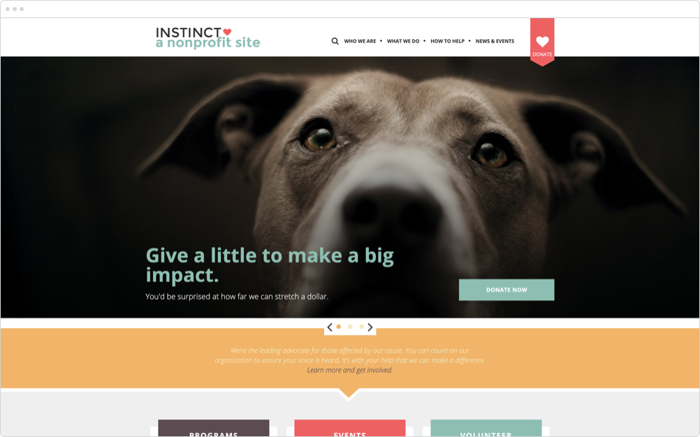 Nonprofit Website Design Instinct