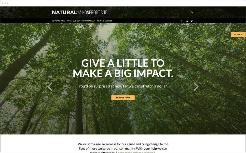 Nonprofit Website Design Natural