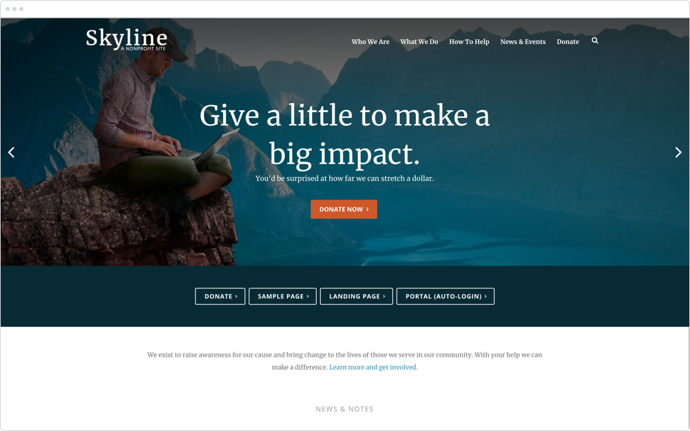 Nonprofit Website Design Skyline