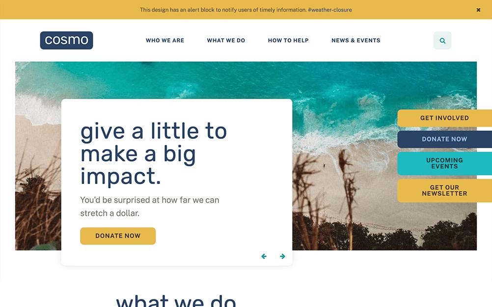 nonprofit-design-cosmo